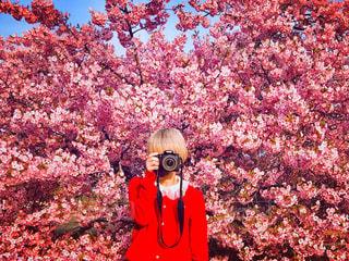 木の前に立っている人の写真・画像素材[2272652]
