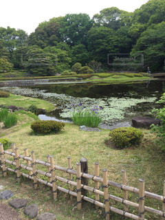 東京の写真・画像素材[466893]