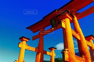 神社の写真・画像素材[556919]