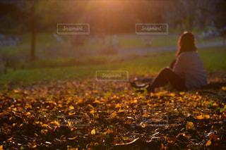 草の上に座っている鳥カバー フィールドの写真・画像素材[853950]