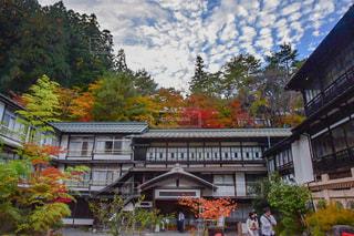 背景の木と家の写真・画像素材[855722]