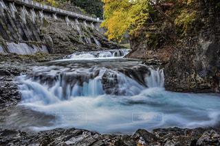 川の側の木と滝の写真・画像素材[865606]