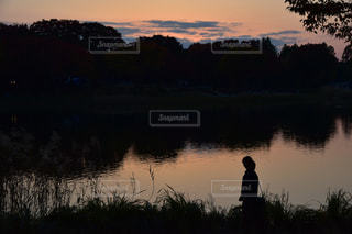 水の体に沈む夕日の写真・画像素材[869047]