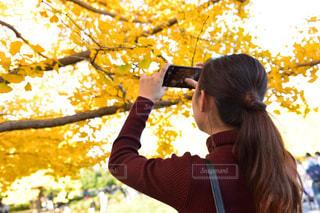 ツリーの前に立っている人の写真・画像素材[887173]