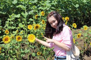 公園,夏,花畑,ひまわり,向日葵,笑顔,ひまわり畑,微笑み