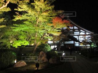 夜の街の景色 - No.846013