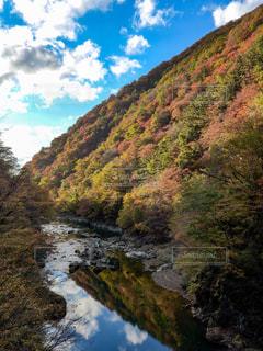 秋,紅葉,緑,渓流,秋田,仙北郡,抱き返り渓谷