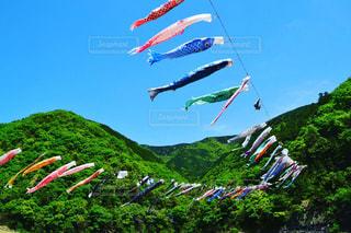 凧の飛行の人々 のグループの写真・画像素材[1032342]