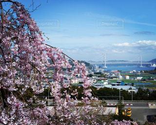 都市の景色の写真・画像素材[1033654]