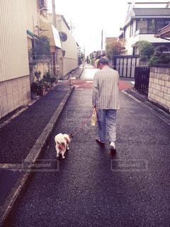 No.463807 散歩