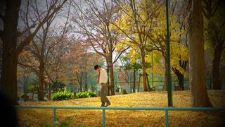 公園 - No.617773