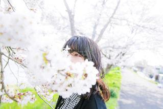 花 - No.465022