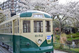 春の写真・画像素材[532108]