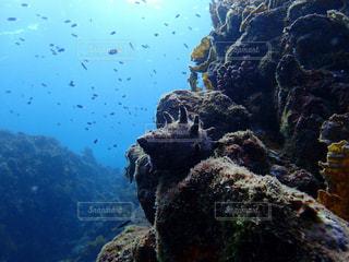 大きな岩の水中ビューの写真・画像素材[801111]