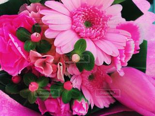 花束に込めて。の写真・画像素材[1792872]