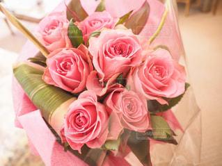 花の写真・画像素材[472380]