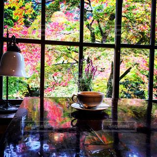 大きなガラス窓の写真・画像素材[850587]