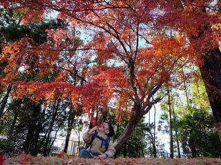 木の隣に立っている男の写真・画像素材[872257]