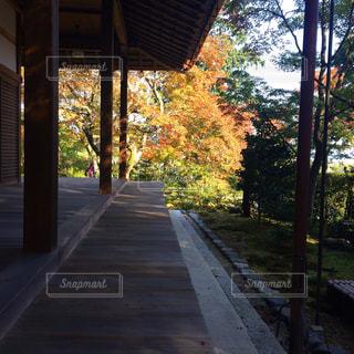 静かなお寺の写真・画像素材[847310]