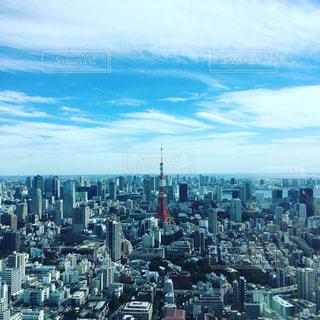 東京タワーの写真・画像素材[431055]