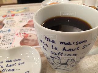 カフェ,鳥,表参道,小鳥,ことりカフェ