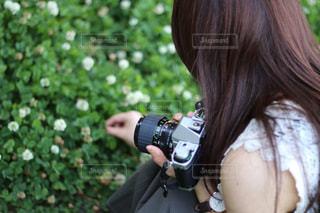 LOVEの写真・画像素材[1259775]