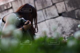 クローバーさがしの写真・画像素材[1260752]