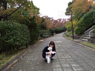 秋のお散歩の写真・画像素材[2016773]