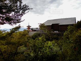 清水の舞台 2017年8月の写真・画像素材[907309]