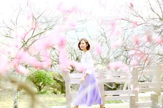春 - No.482360