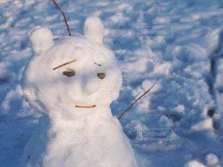 雪の写真・画像素材[488244]