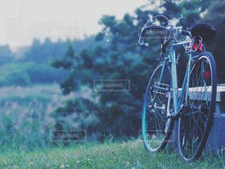 草の上自転車駐車の写真・画像素材[1004802]