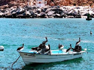 水の中のボートに乗っている人々のグループの写真・画像素材[2332880]