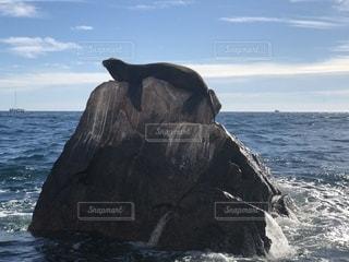 水域の真ん中にある岩の島の写真・画像素材[2332980]