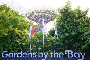 シンガポール - No.648822