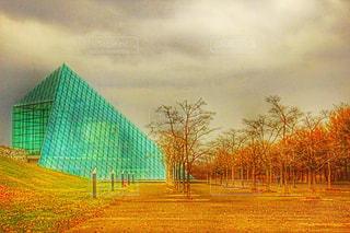 背景の木と大規模なグリーン フィールドの写真・画像素材[882619]