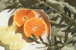 オレンジ色の果物のスライスの写真・画像素材[1770264]