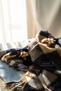 温かい日差しとマフラーとの写真・画像素材[4315464]