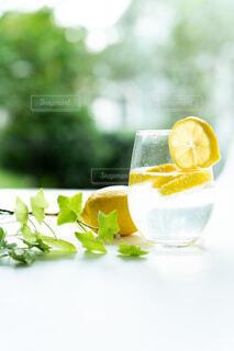 レモンの炭酸水の写真・画像素材[4767914]