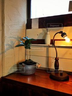 インテリア,ライト,観葉植物