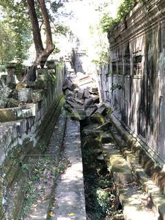 絶景,海外,カンボジア,天空の城ラピュタ,ベンメリア遺跡