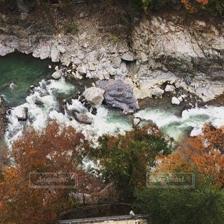 秋の写真・画像素材[10951]