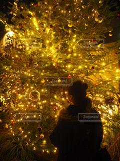 キラキラ クリスマスツリーの写真・画像素材[916291]