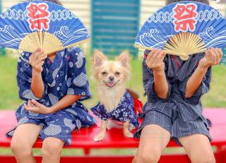 傘を保持している小さな女の子の写真・画像素材[1372152]