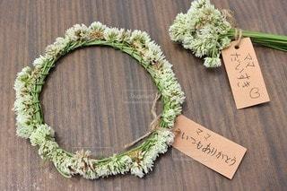 花冠の写真・画像素材[3247252]