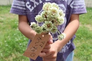 花束の写真・画像素材[3247249]