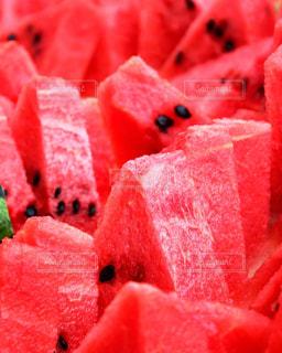 夏の写真・画像素材[529002]