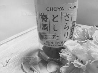 モノクロ,白黒,花びら,アルコール,梅酒,さくら