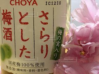 花びら,アルコール,梅酒,さくら