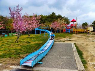 公園のベンチの写真・画像素材[1122019]